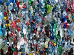 plastic bottles - Vyborg.TV